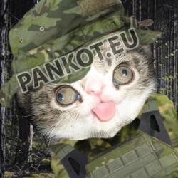 PanKot