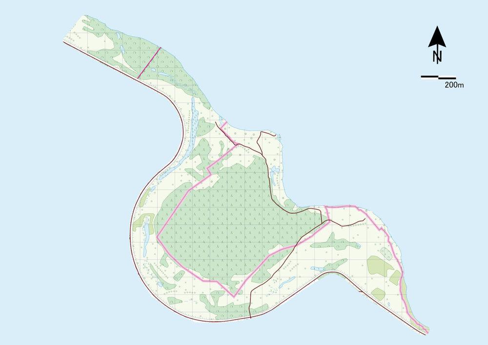 wyspa osmiornicy.jpg